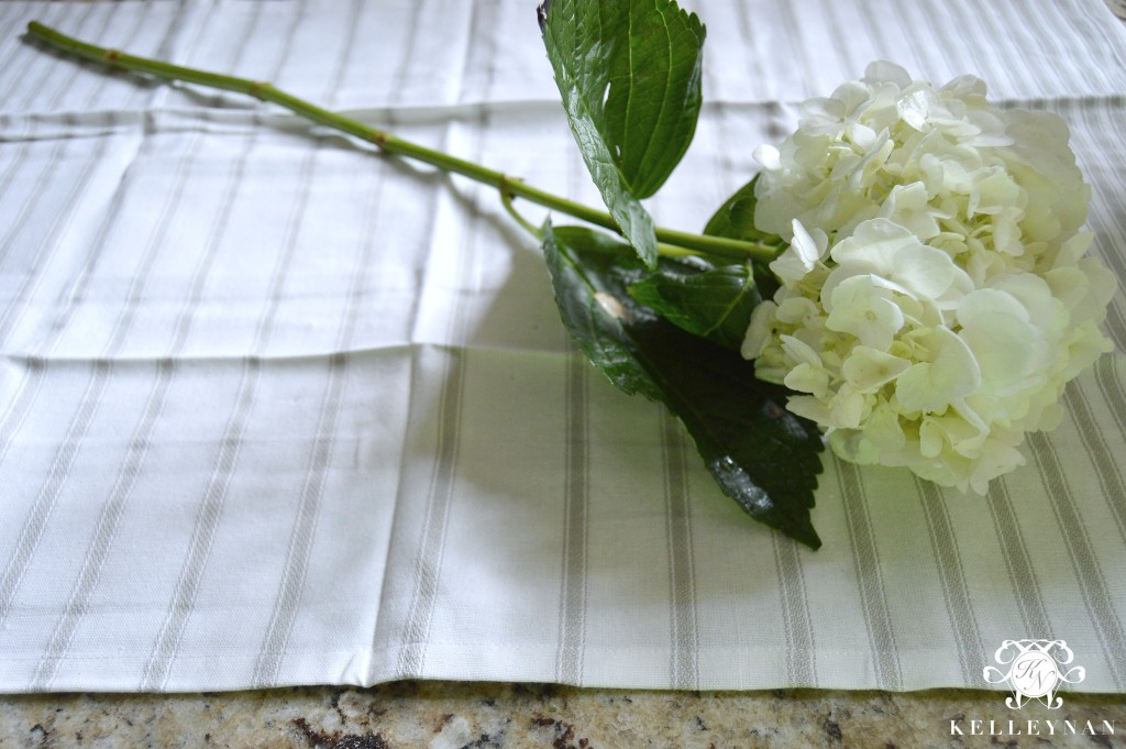 White Hydrangea Creating a Flower Arrangement