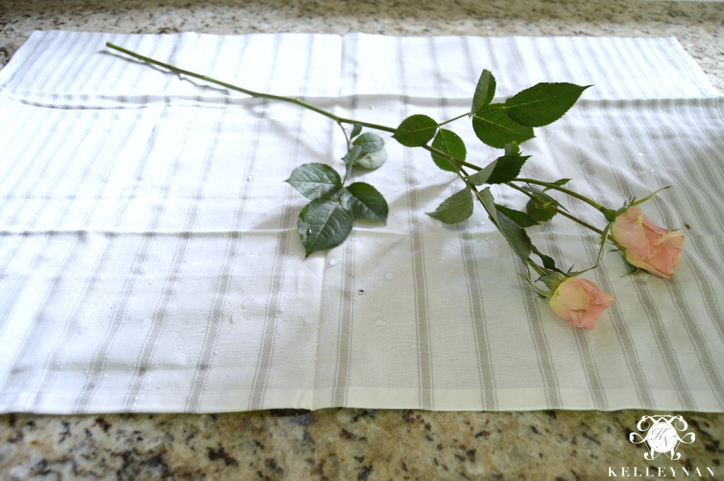 baby rose branches