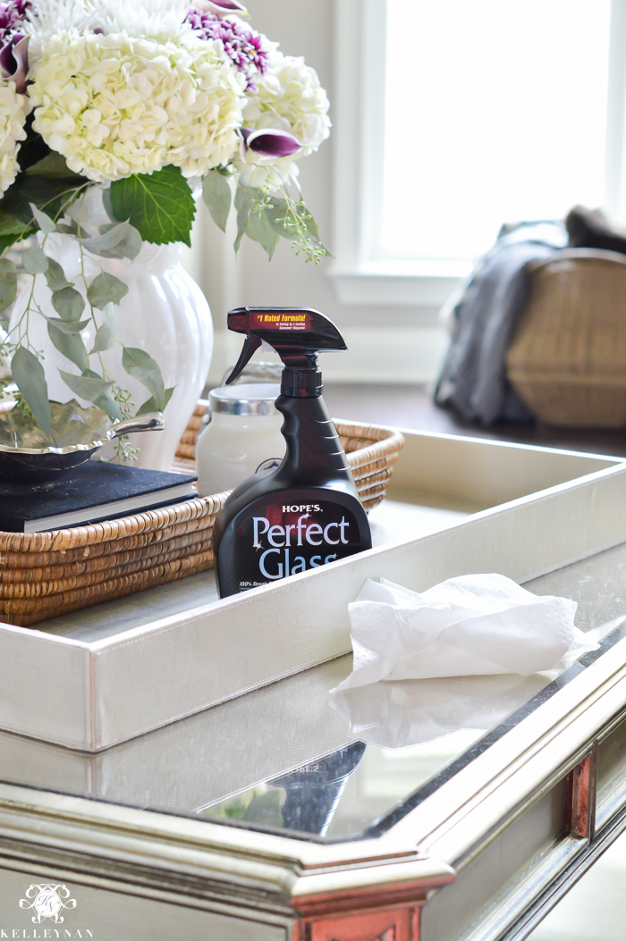 hopes-perfect-glass-with-flowers-on-mirrored-champagne-finish-coffee-table