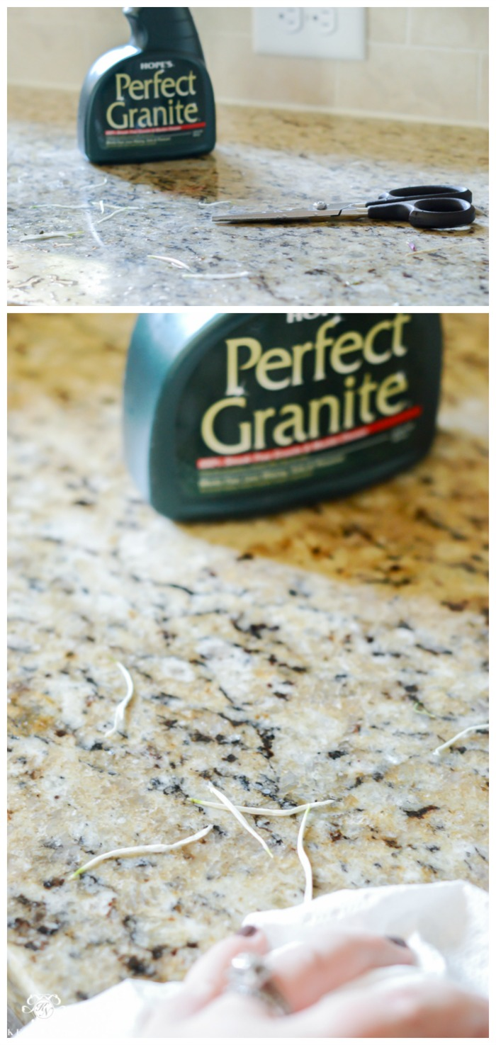 perfect-granite-cleaning-up-flower-debris