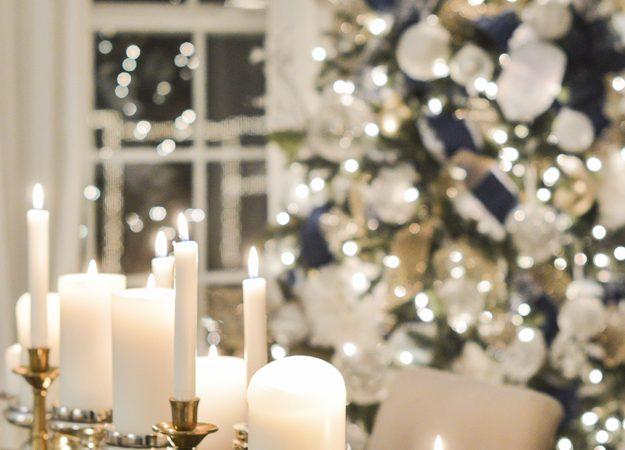 Blogger Progressive Dinner: Christmas Edition   The Entree