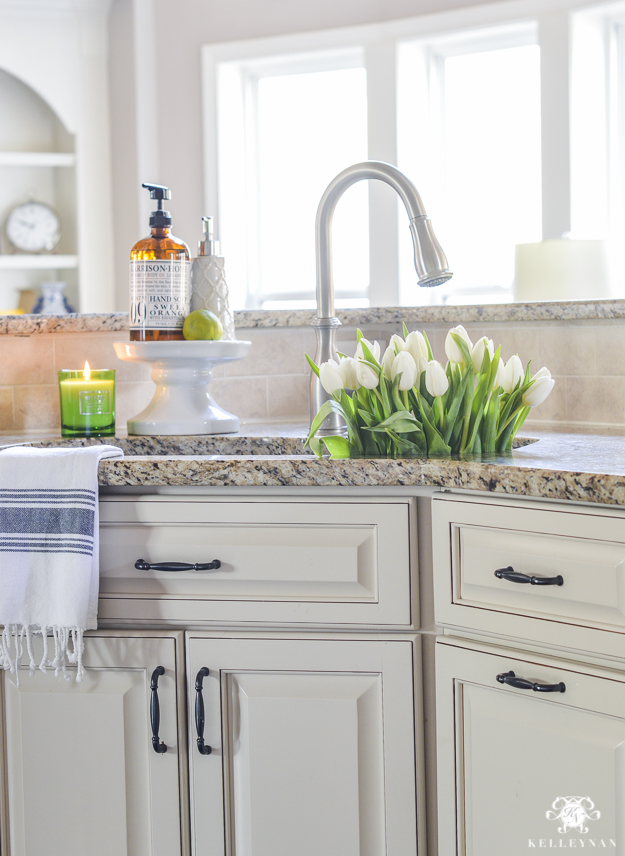 Organization for Under the Kitchen Sink | Kelley Nan
