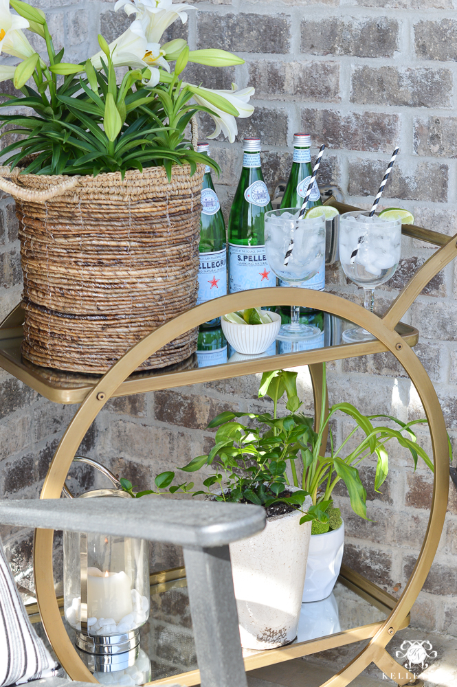 Bar Cart on Porch as Plant Stand