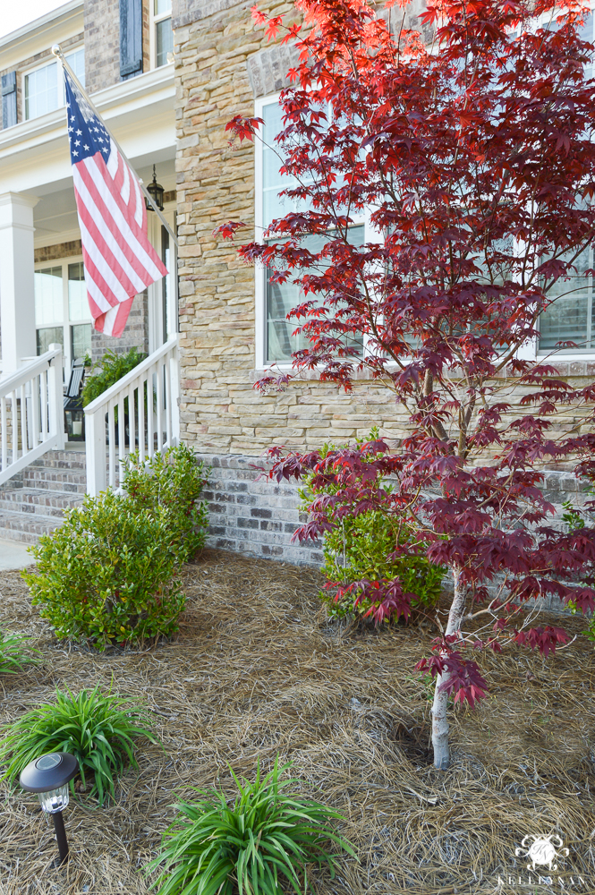 Spring Decorated Rocking Chair Front Porch with red japaenese maple tree in landscaping