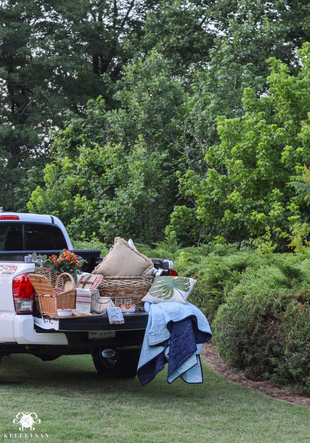 Picnic and Tailgate Ideas and Setup- fancy summer tailgate