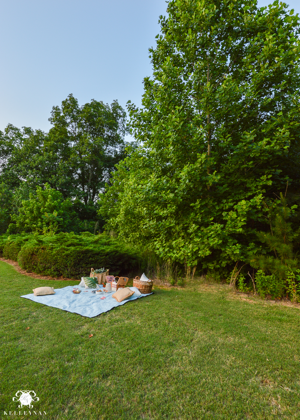 Picnic and Tailgate Ideas and Setup- how to picnic