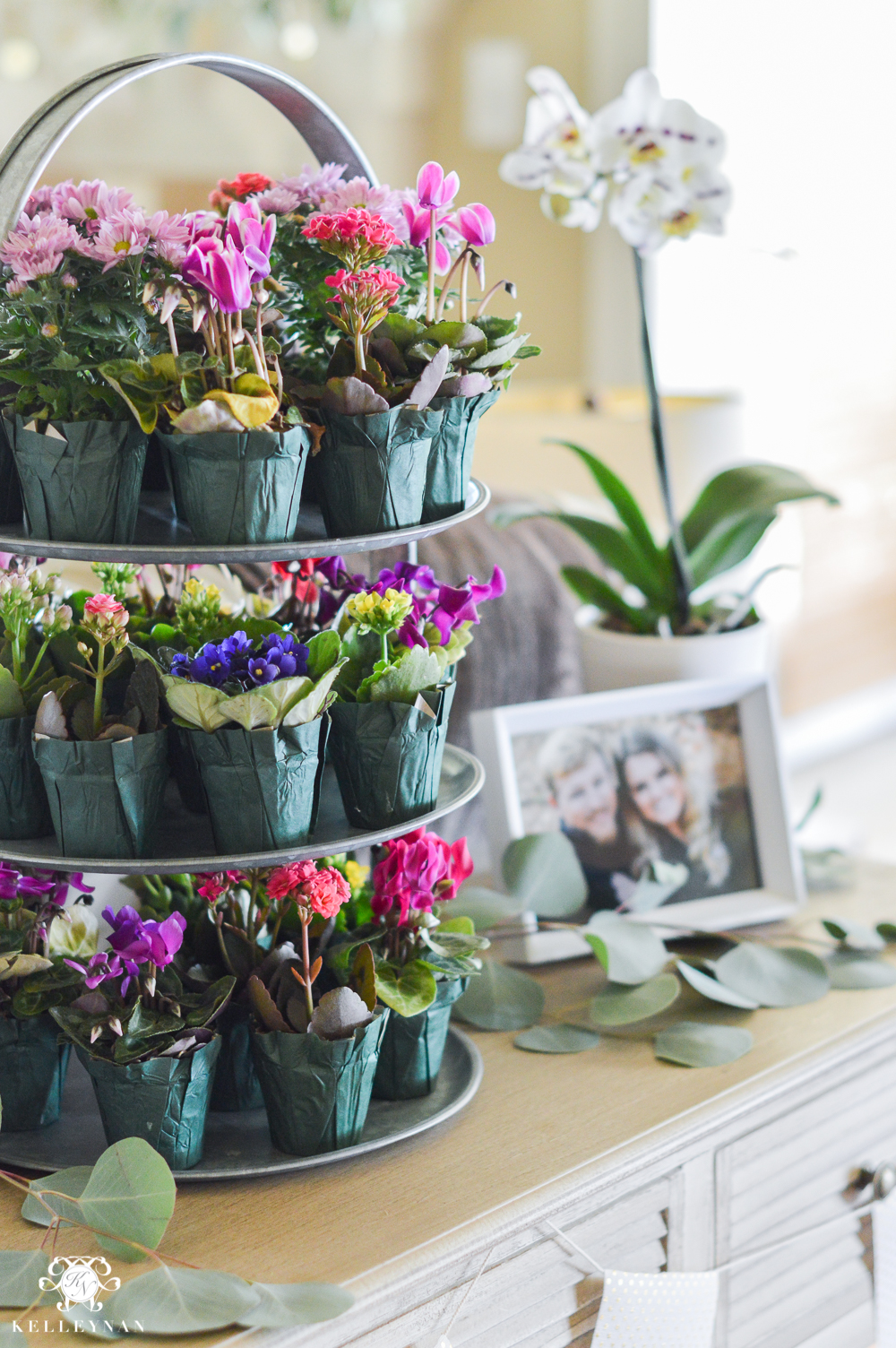 ideas to throw an indoor garden party bridal shower