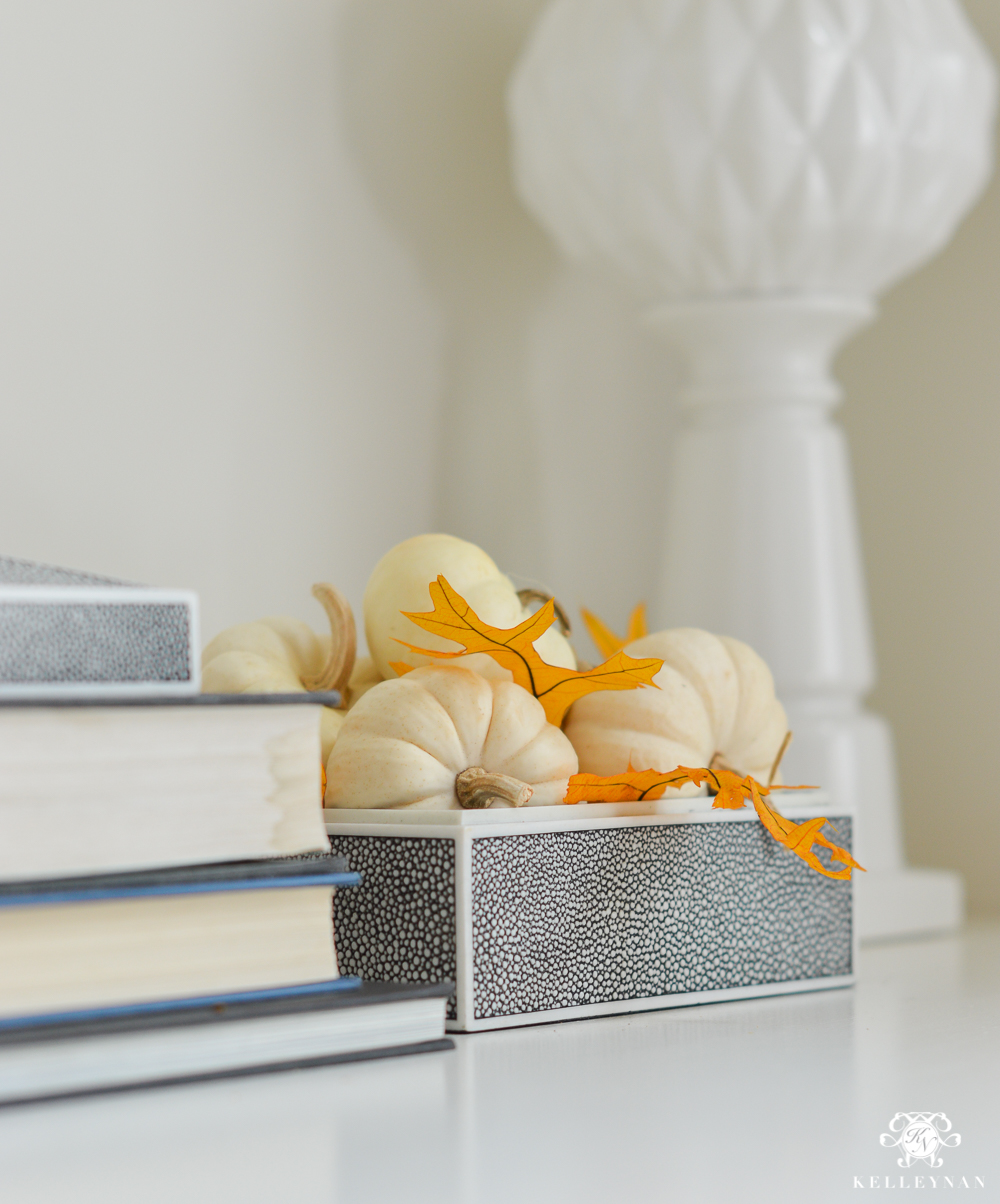 Pumpkins on a bookshelf with styling ideas