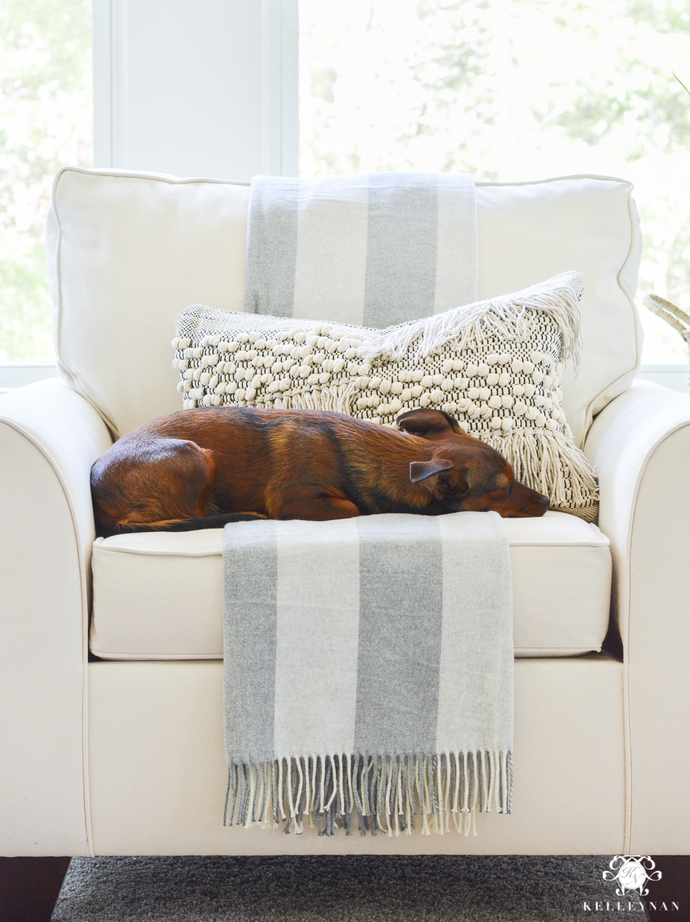 Puppy napping in oversized chair in sitting area