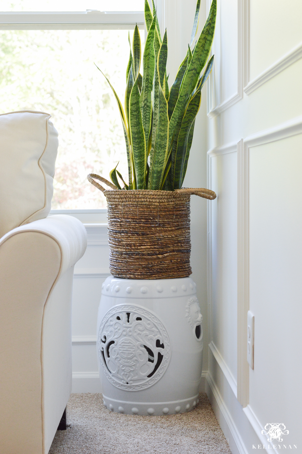Style a snake plant in the corner of the room in a basket on top of a garden stool