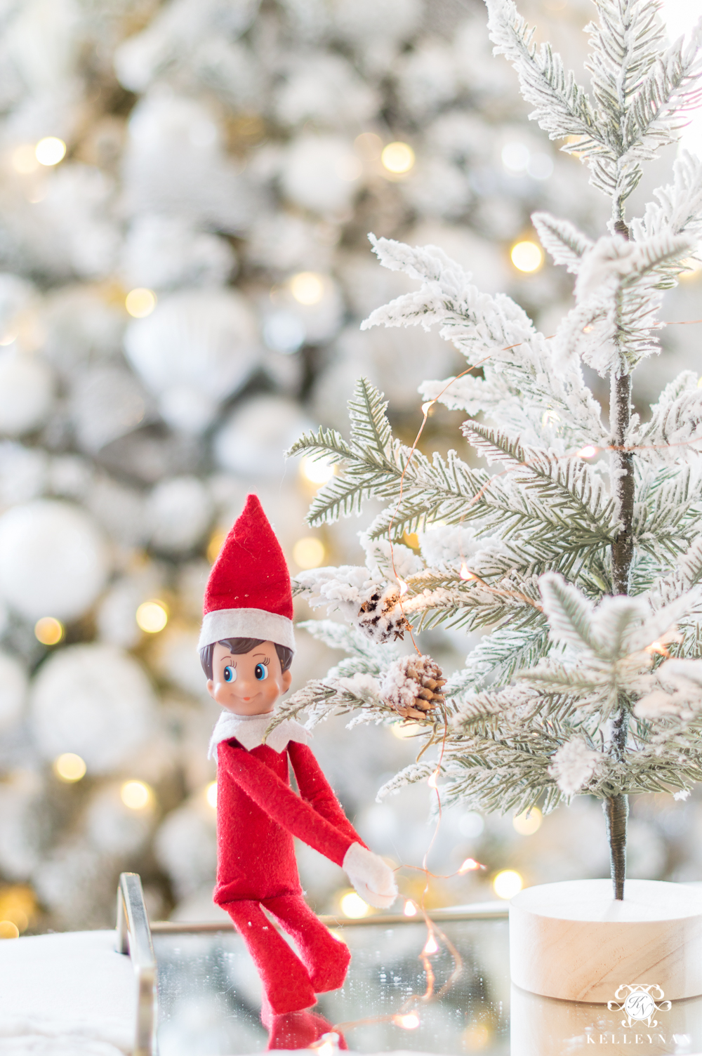 Elf on the shelf for grownups and couples