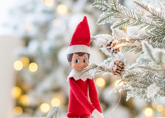 Elf on the Shelf Ideas for Adults – It's Not Just for Kids!