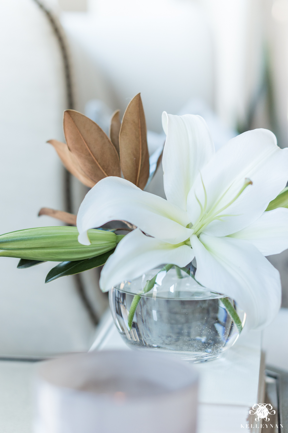 Lily bloom with green magnolia leaves mixed in