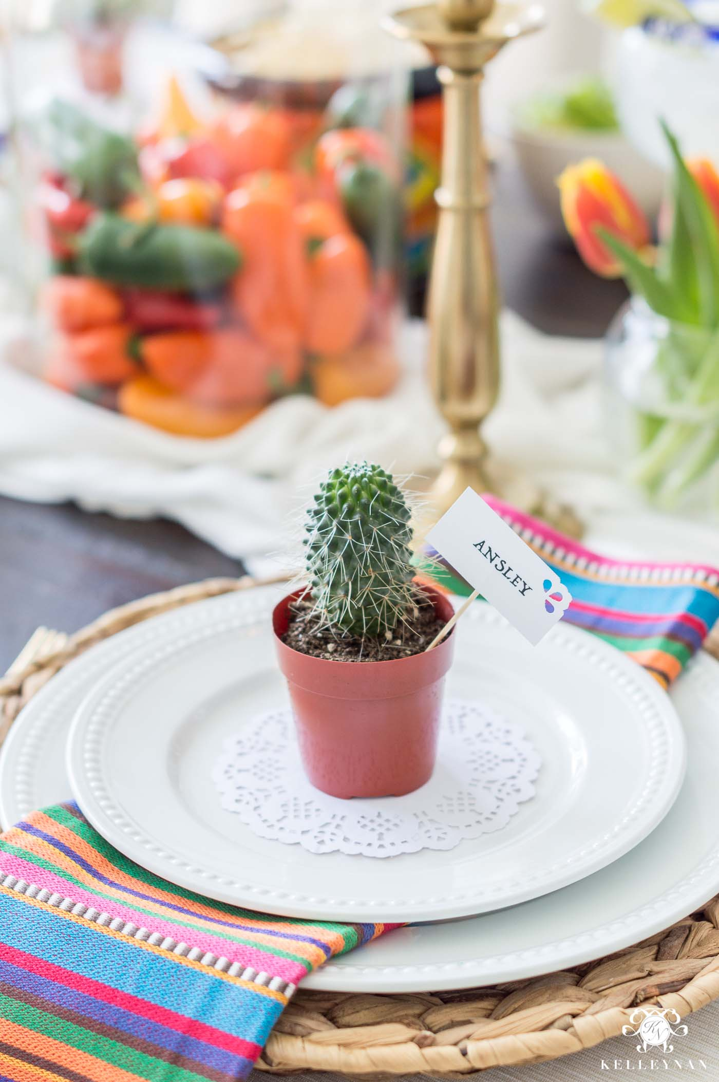 Mini Cactus at Each Place Setting for Mexican Themed Party