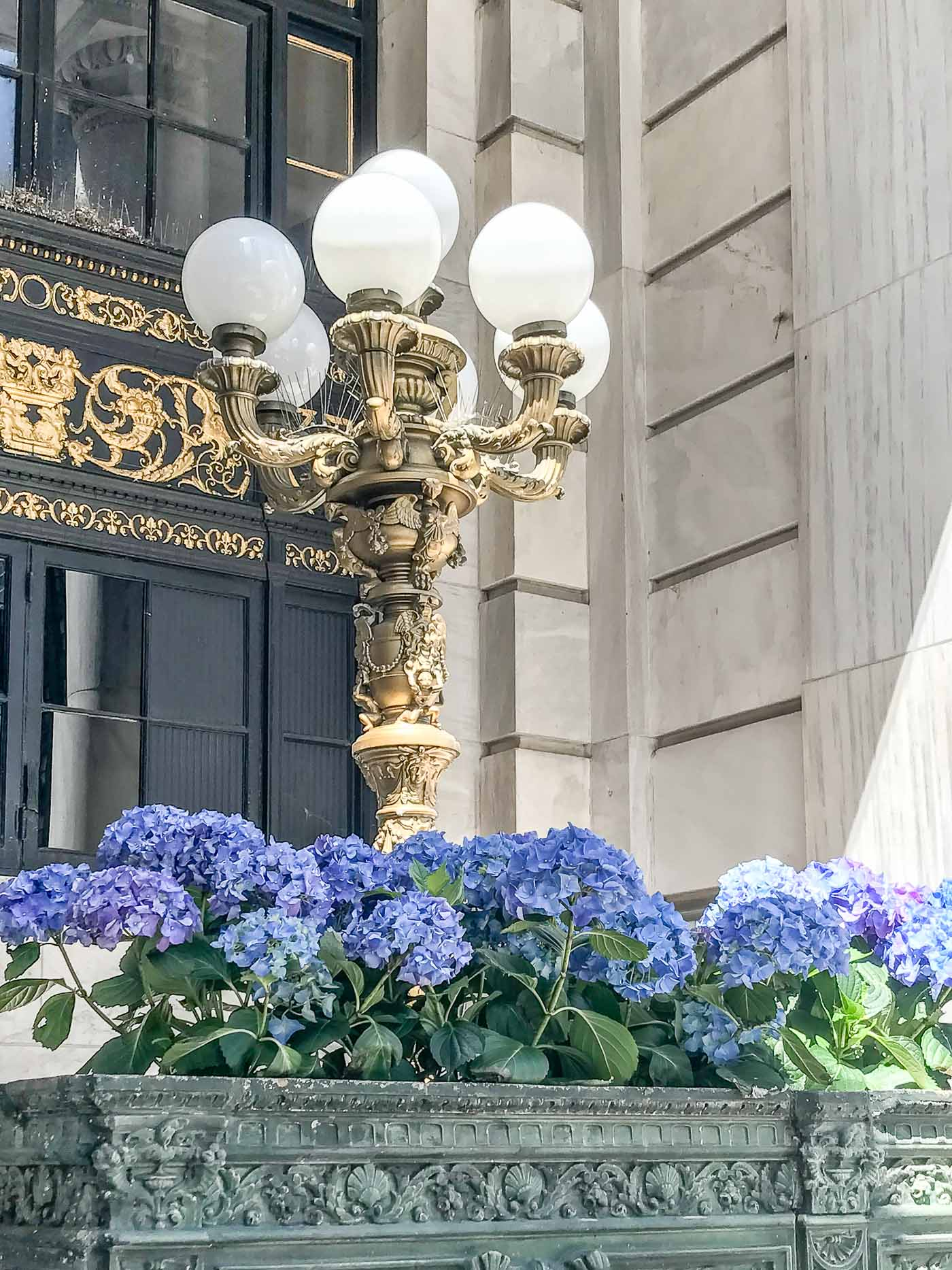 Plaza Hotel outside lamp and hydrangeas