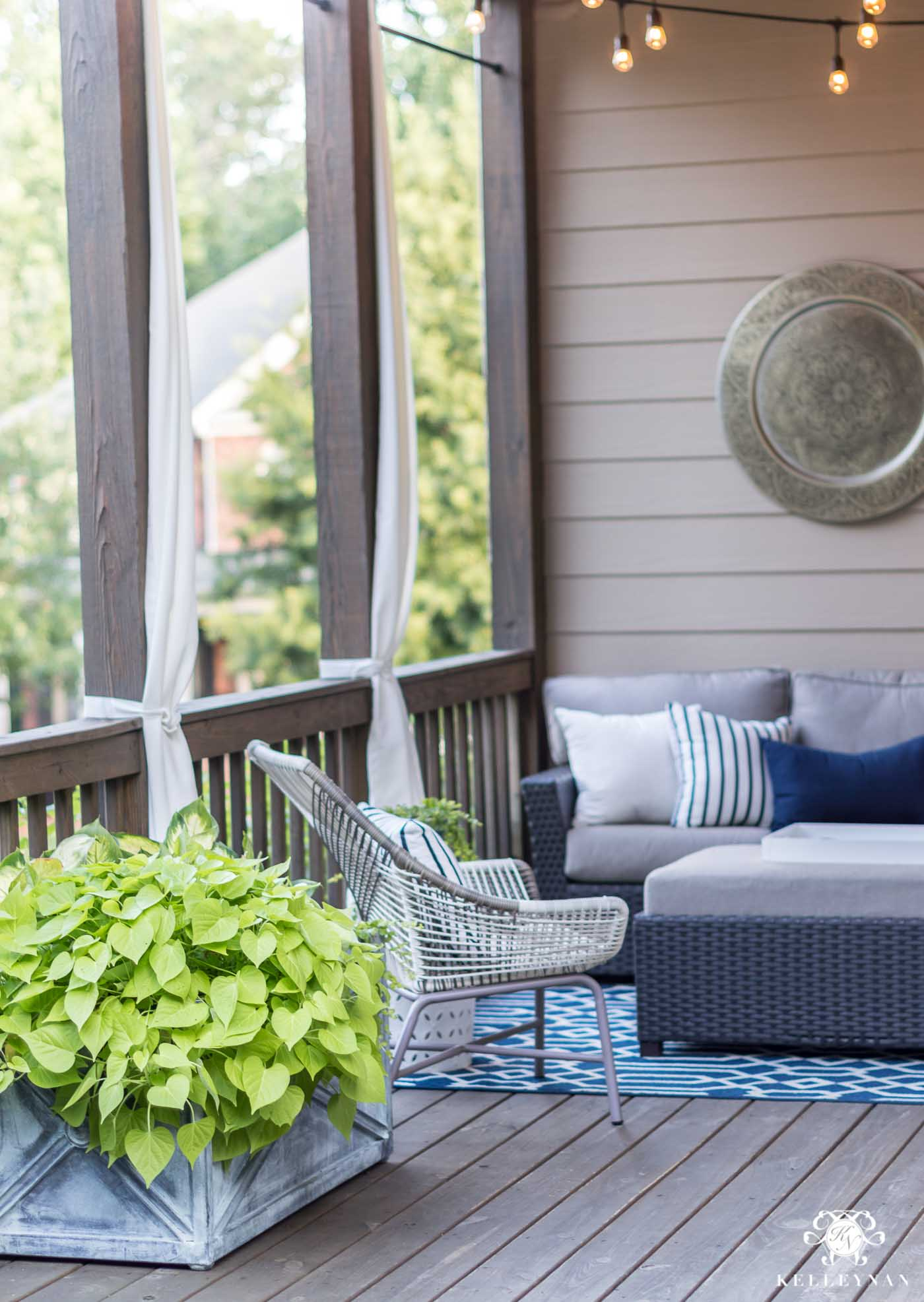 Plants that will thrive on a hot, sunny back deck