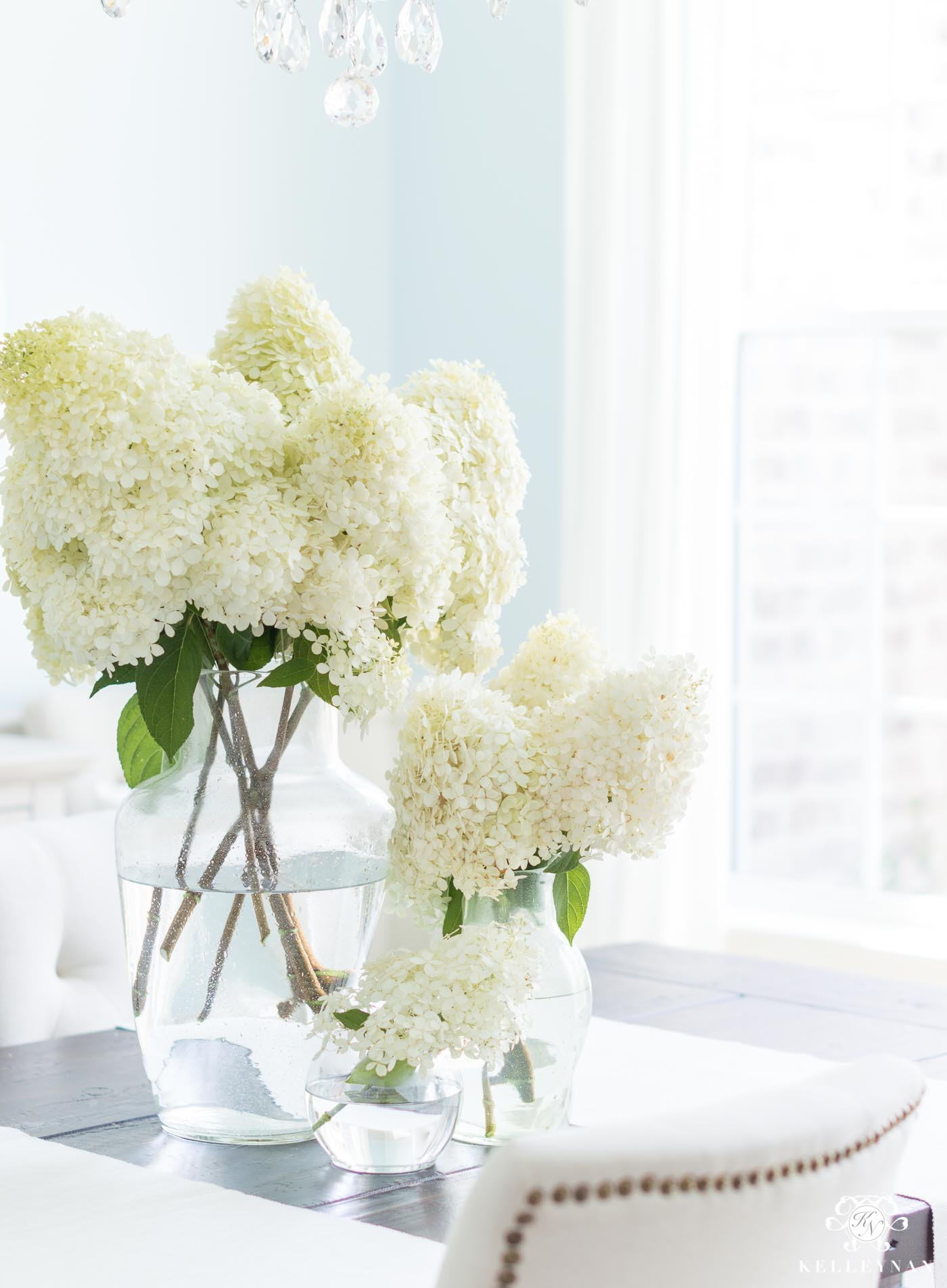 Limelight Hydrangeas Cut Into Flower Arrangements