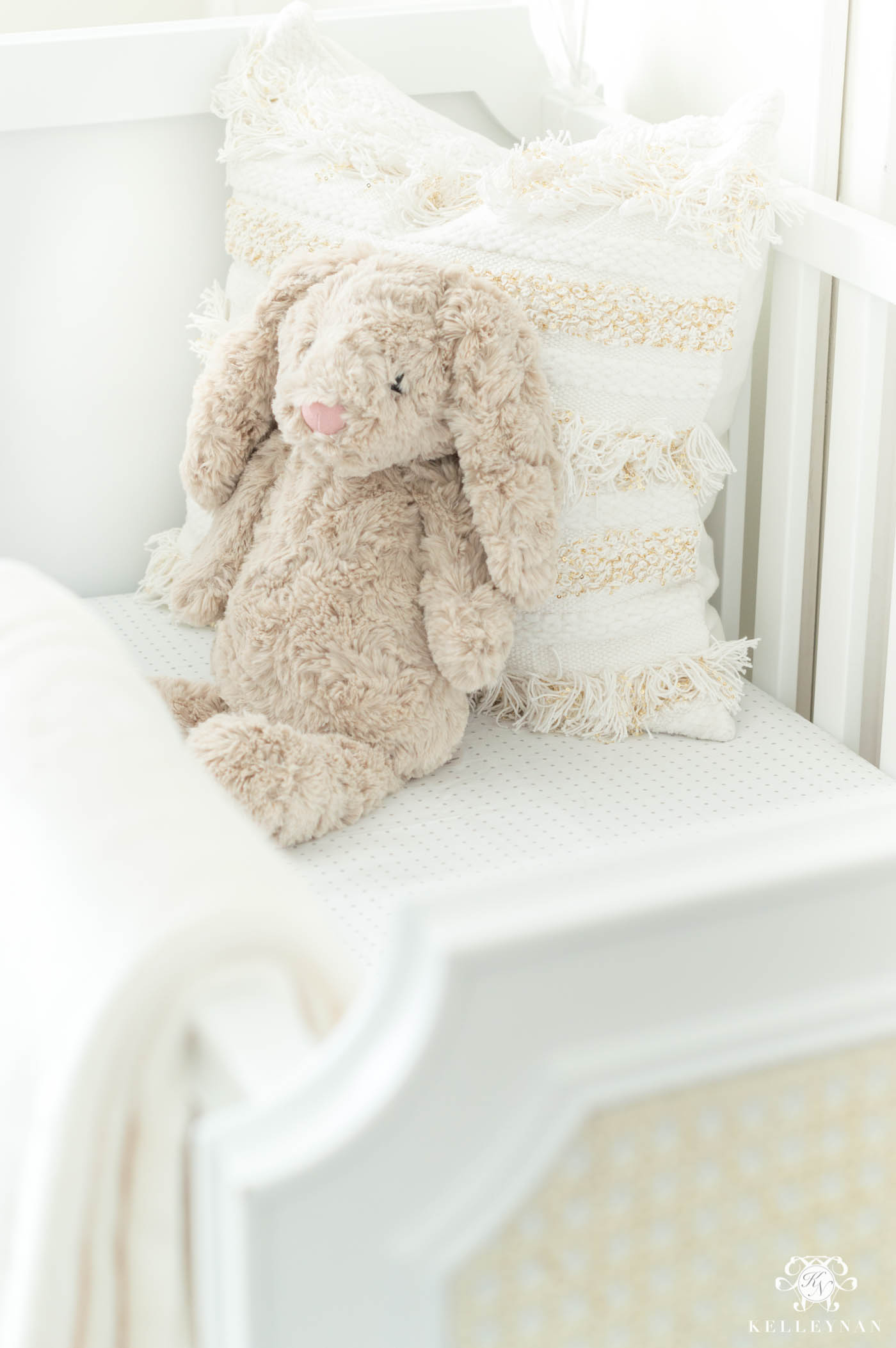 Baby announcement ideas using a crib and nursery and stuffed animal