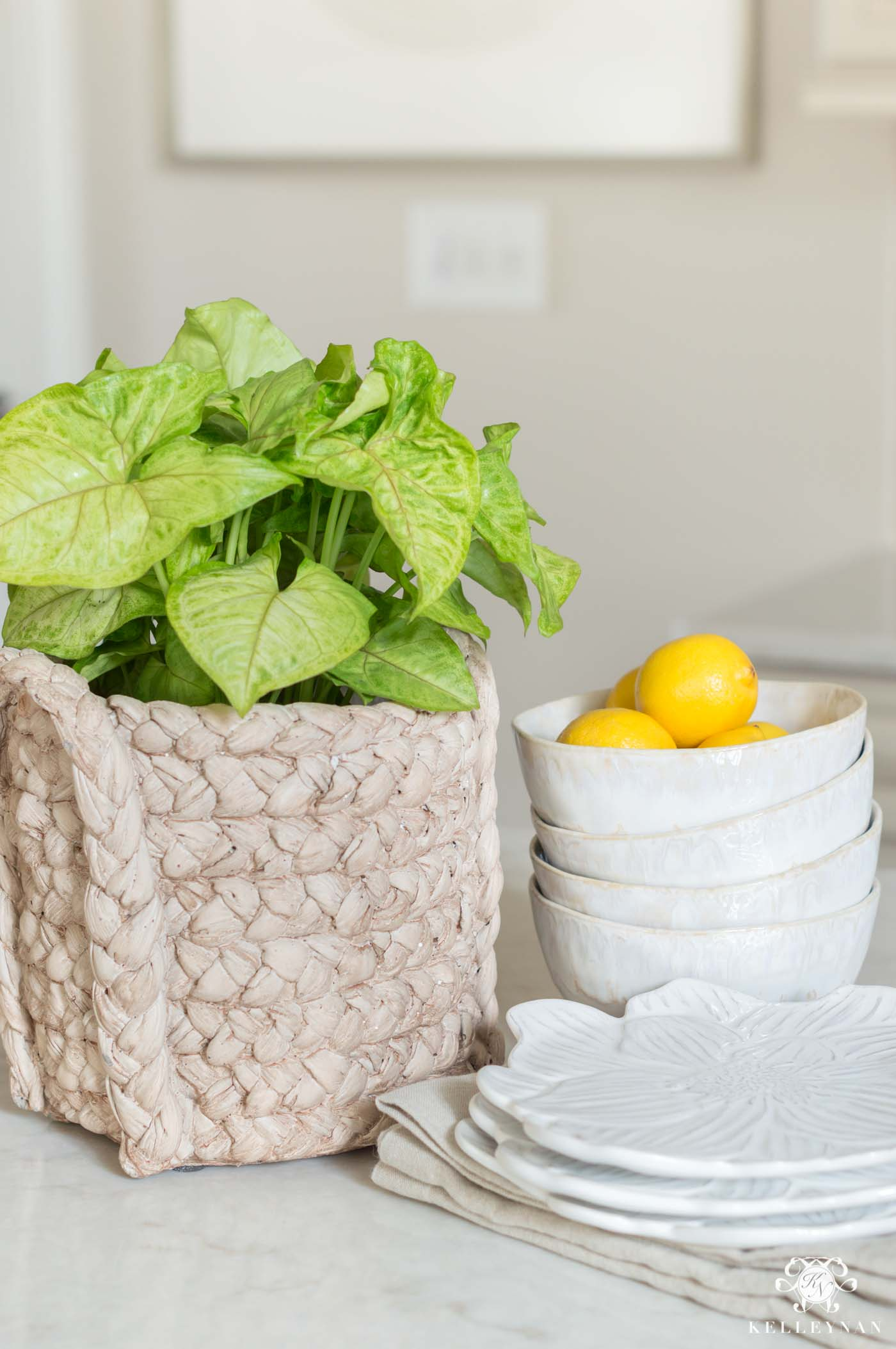 Kitchen decorating ideas for spring with plants and fruit