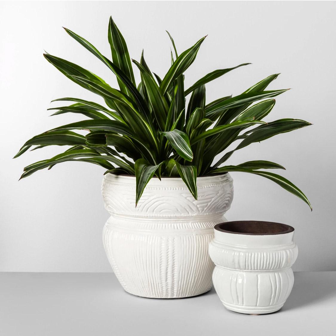 white boho planter