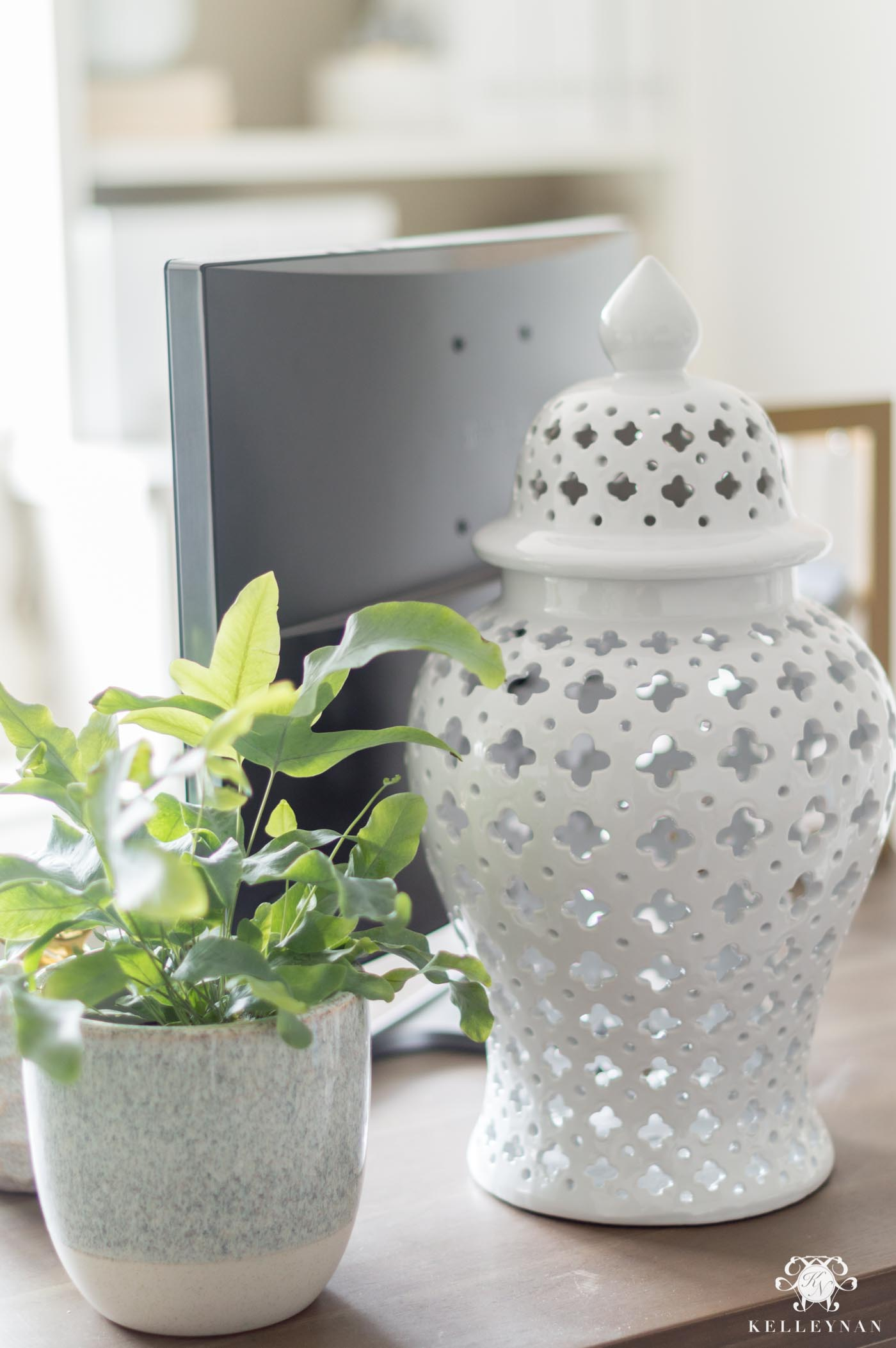 Spring decor and desktop plants
