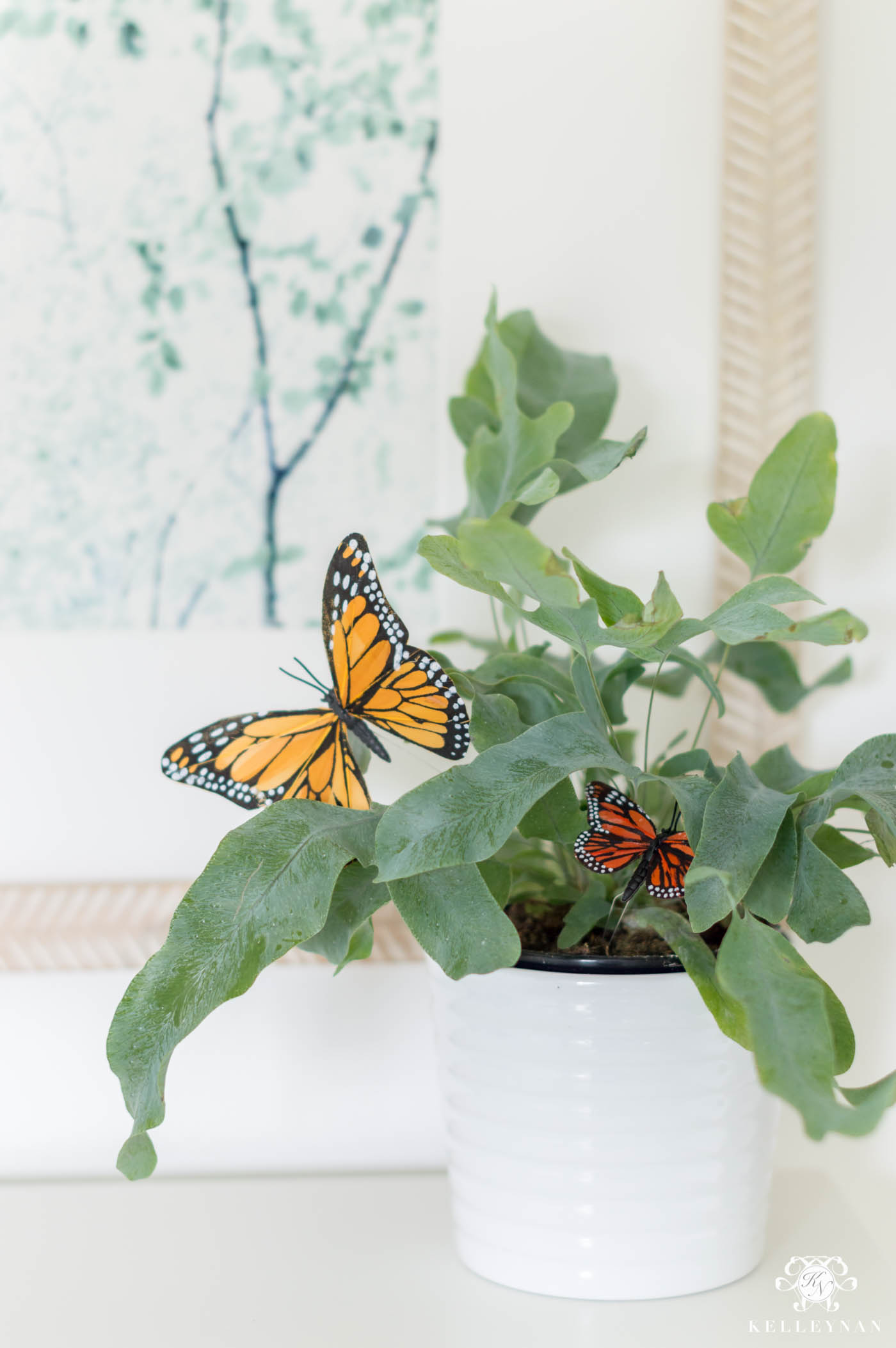 Plant idea for kids with butterflies