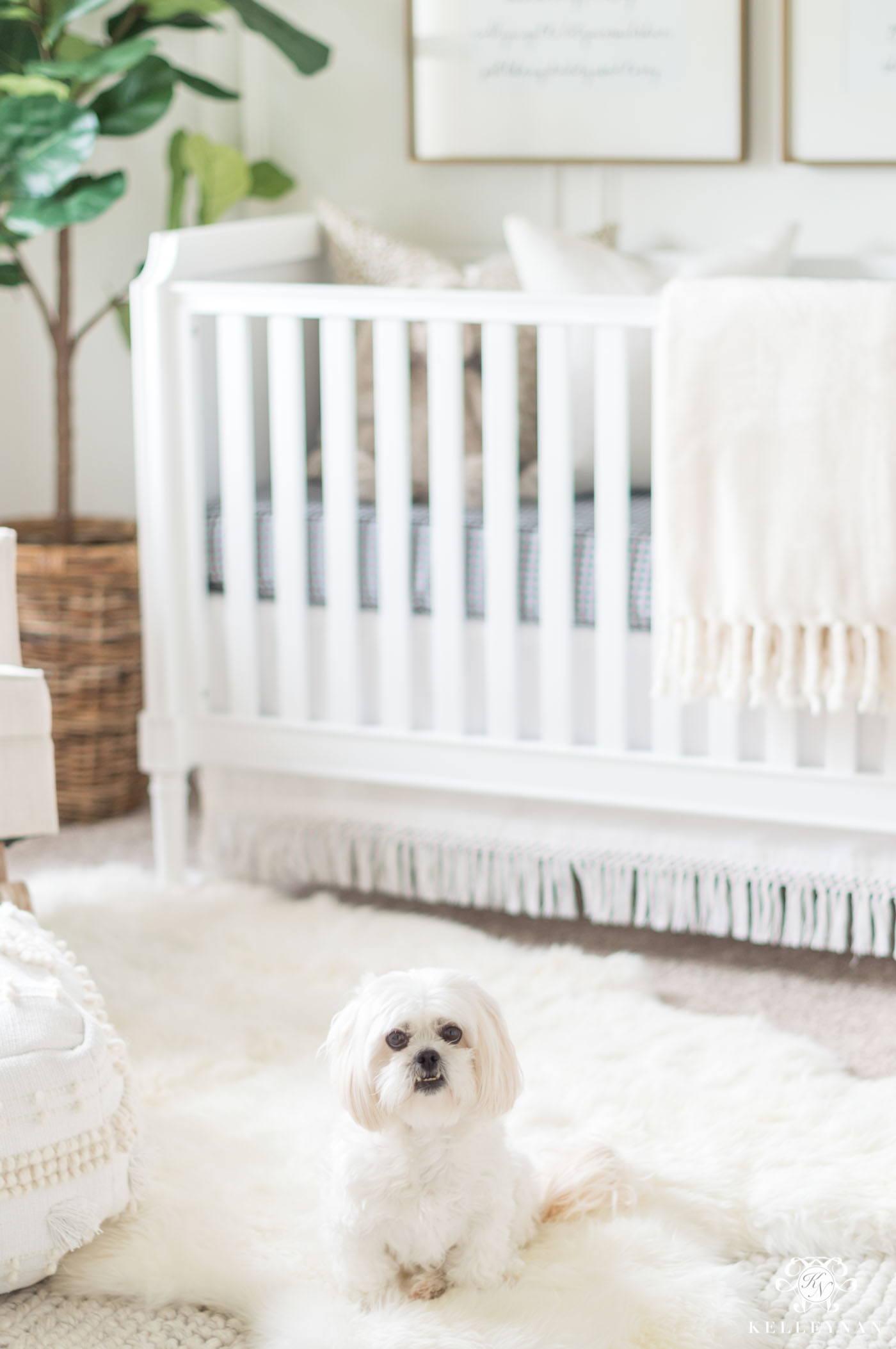 White neutral boho nursery