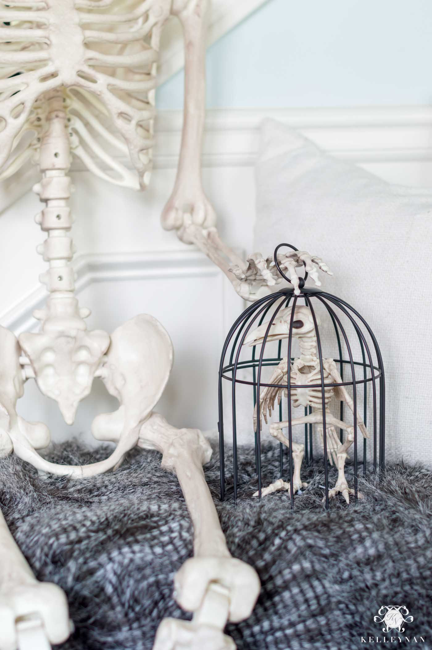 Skeleton Setup for Halloween Decor