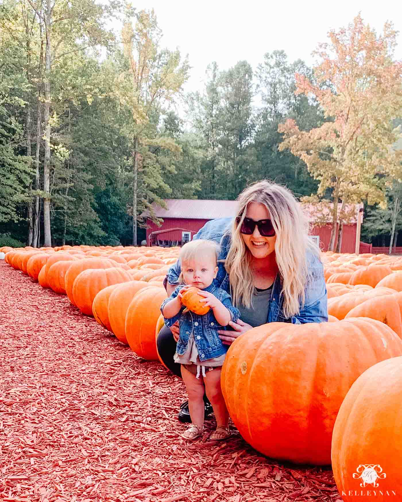 Burt's Pumpkin Farm in Dawsonville, Georgia