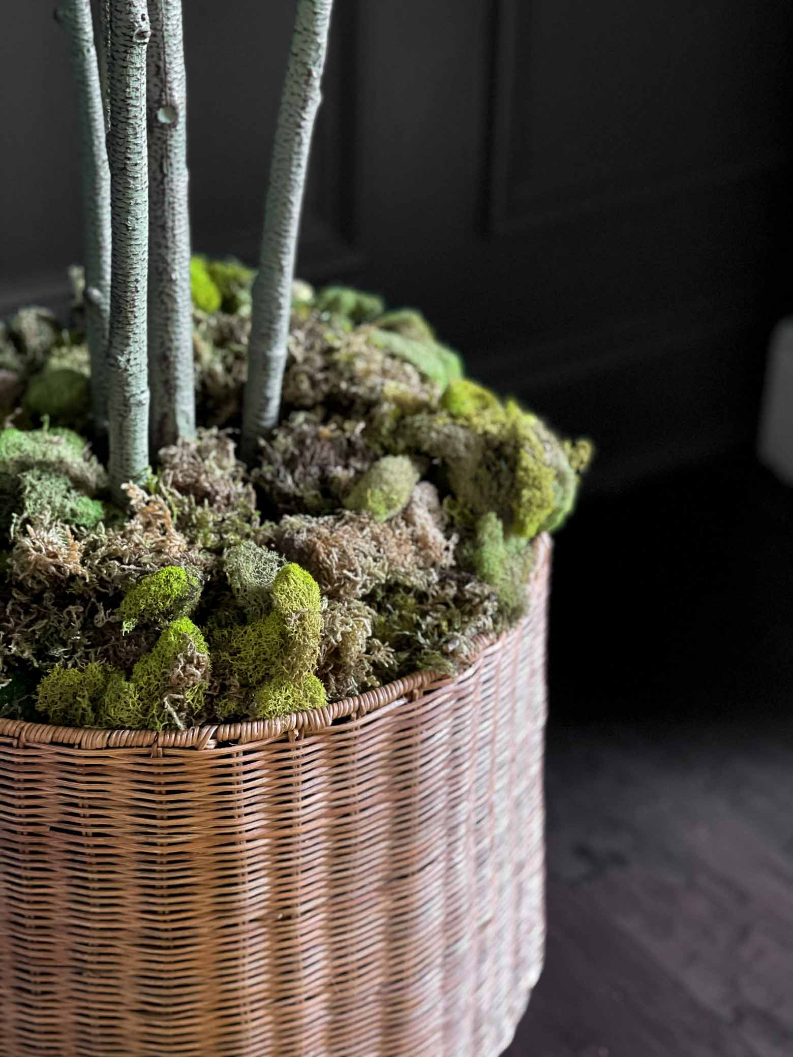Moss Decor Accents for Spring