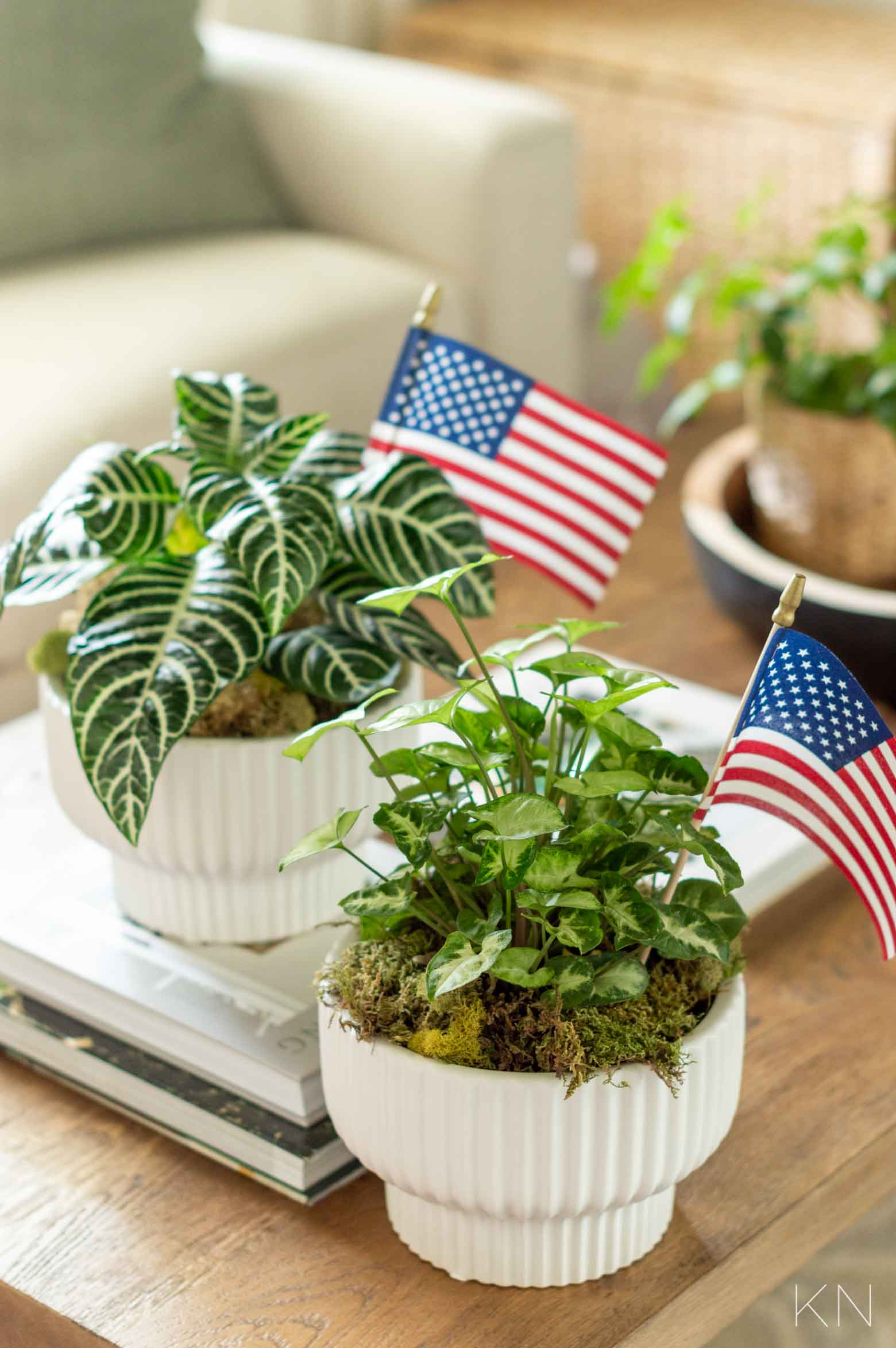 Adorable Patriotic Hostess Gift Ideas for the Fourth of July
