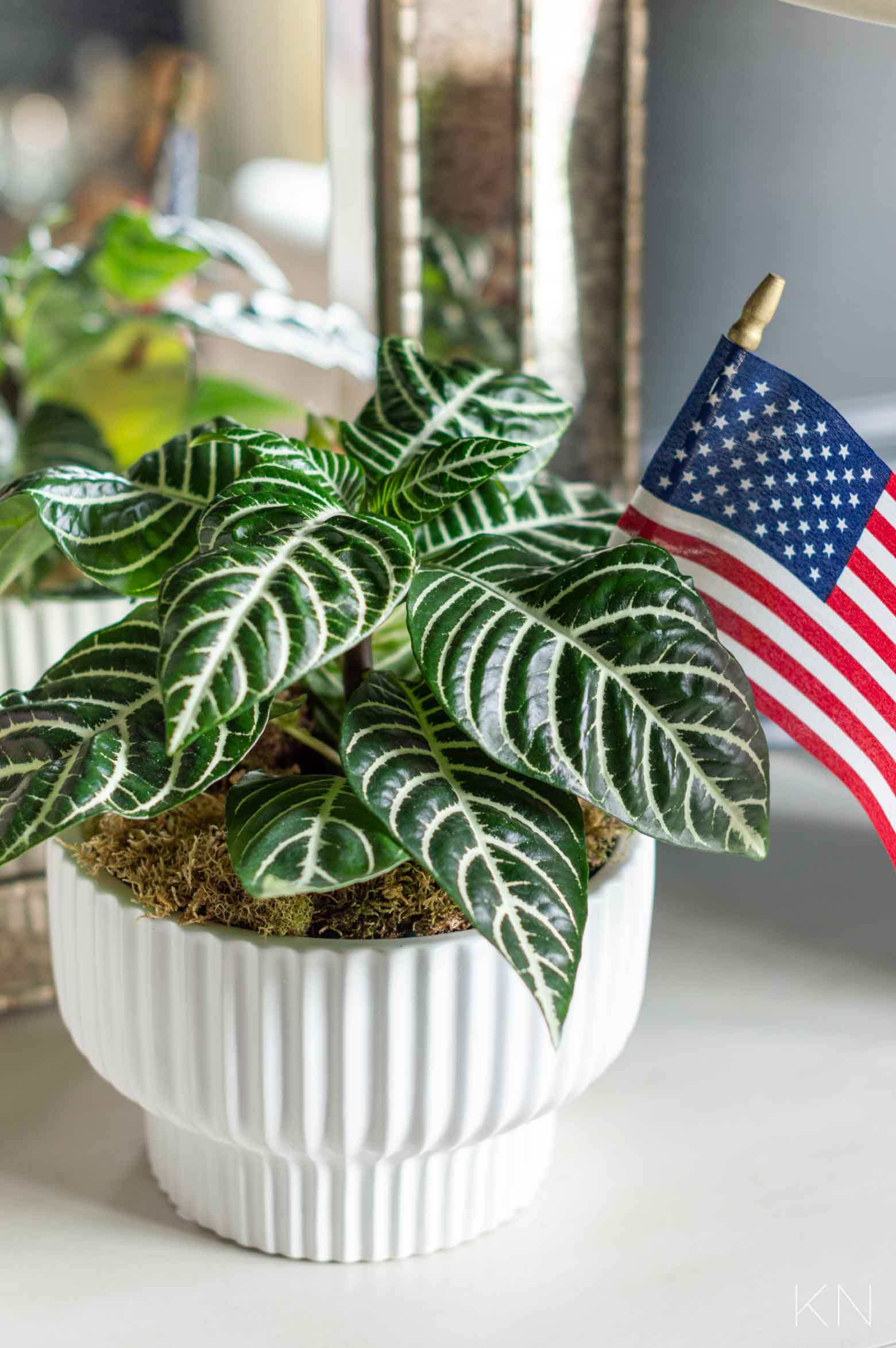 Fourth of July Host Gift Idea- Adorable and Inexpensive!