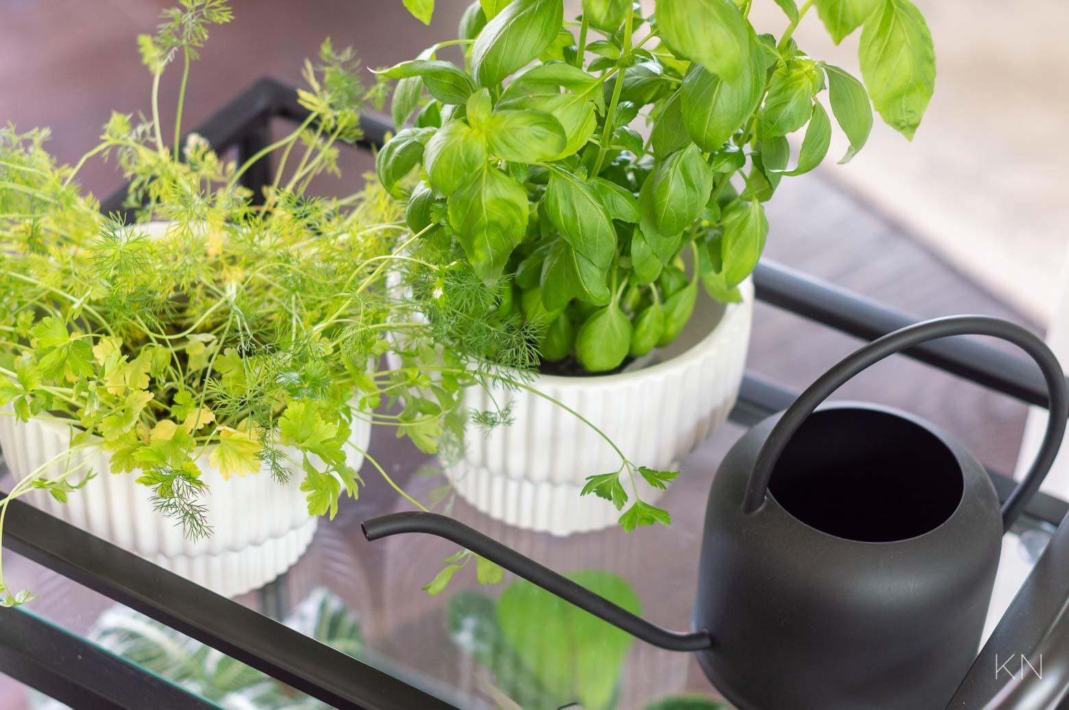 Bar Cart Herb Garden (& Tons of Other Ways to Use Bar Carts Around Your Home)