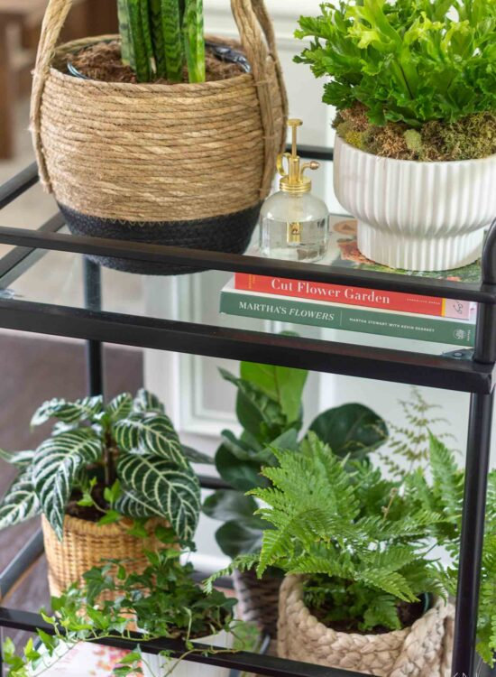 Using a Bar Cart as a Plant Shelf (Plus Tons of Other Bar Cart Ideas Around the House!)